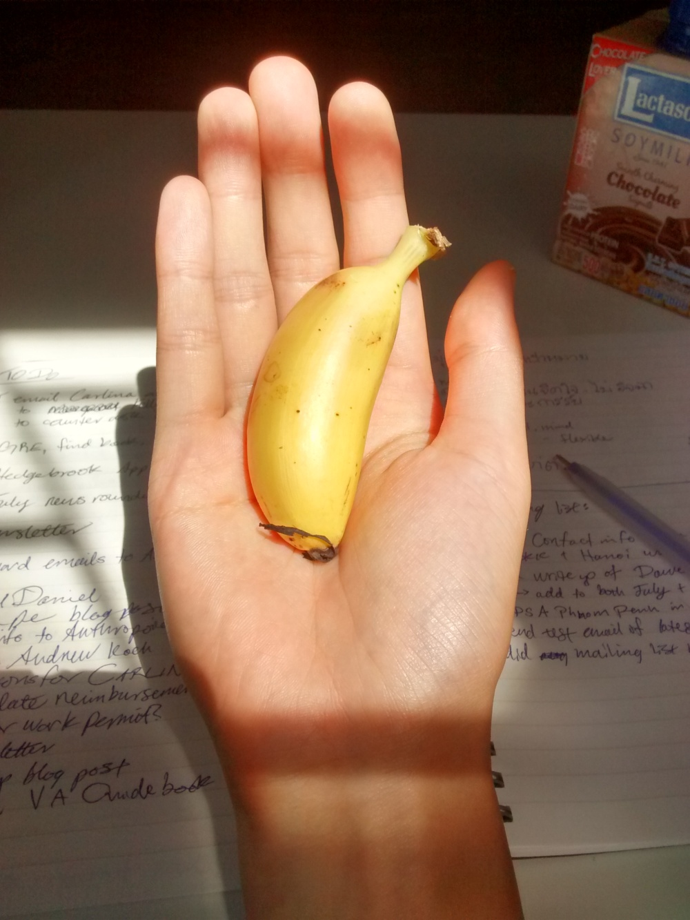 smallest banana